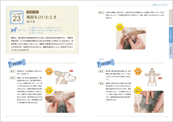 sample1_9018_5.jpg