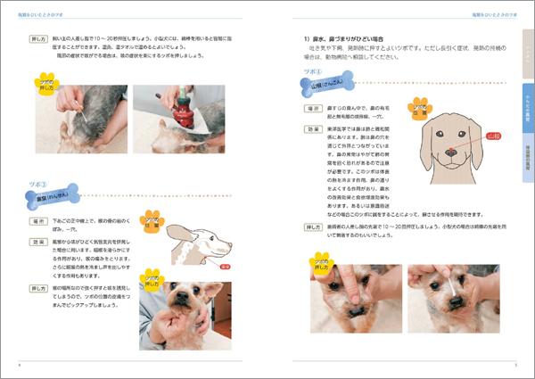 sample2_9018_5.jpg